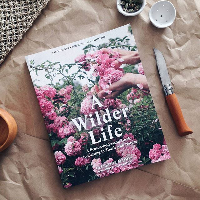 A Wilder Life. A beautiful, season-by-season guide to getting in touch with nature, full of wonderful imagery and ideas to make the most of what each season offers.