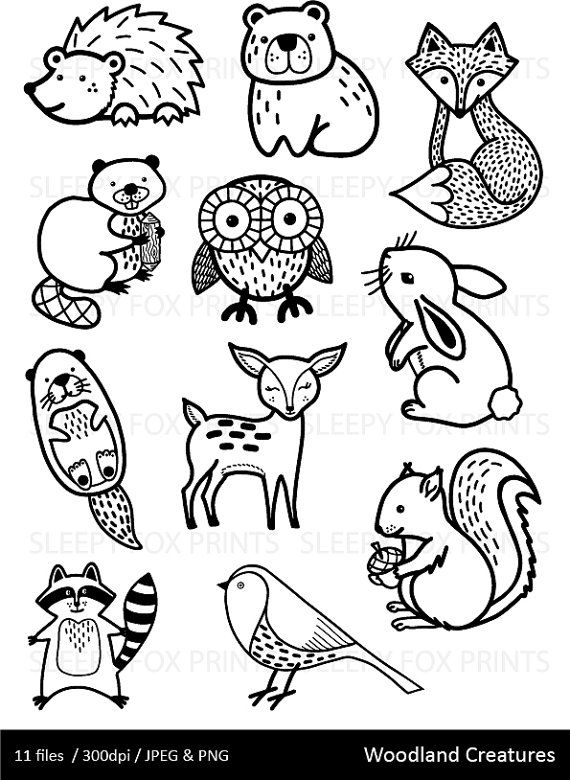45+ Cute Animal Clipart Black And White Rose Hose