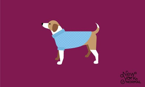 New York Normal: Sweaters, Puppies, Pet Boutiques, New York Cities, Art Design, Graphics Design, Illustrations Documents, York Normal, Dogs Illustrations