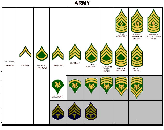 17 Best images about army insignia on Pinterest | United states ...