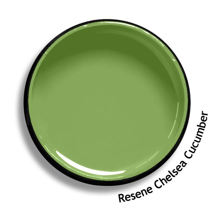 Pistachio Green Paint