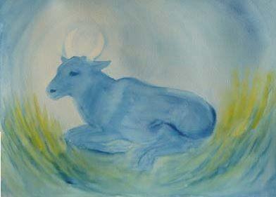 cow watercolour