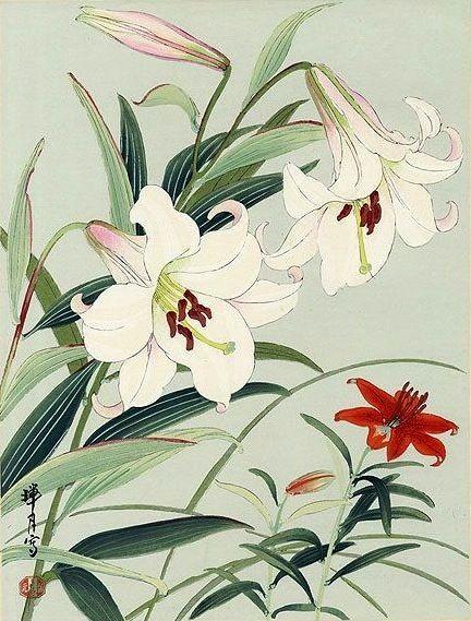 Lilies, by Zuigetsu Ikeda (1877-1944)