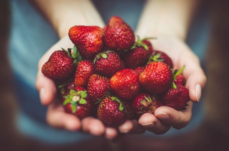 Jak uprawiać truskawki? | Inspirowani Naturą | how to plant strawberries?