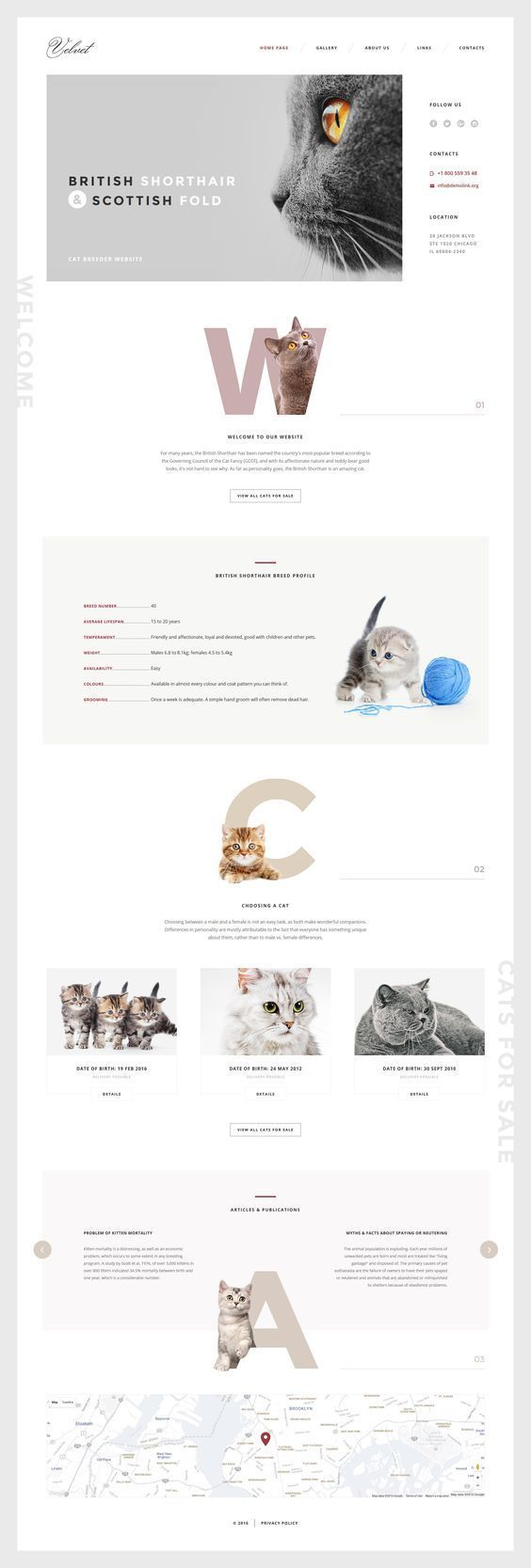 If you are looking for a cats breeds web template, you will be pleasantly impressed by design of this one. A calm color combination creates an elegant look, channeling the look of the visitor to the images. Contact information placed at the right side of the template attracts attention just as much as the imagery, due to its unusual layout. This responsive cats template may become a perfect basis... ** More info could be found at the image url. #WebsiteDesignIdeas