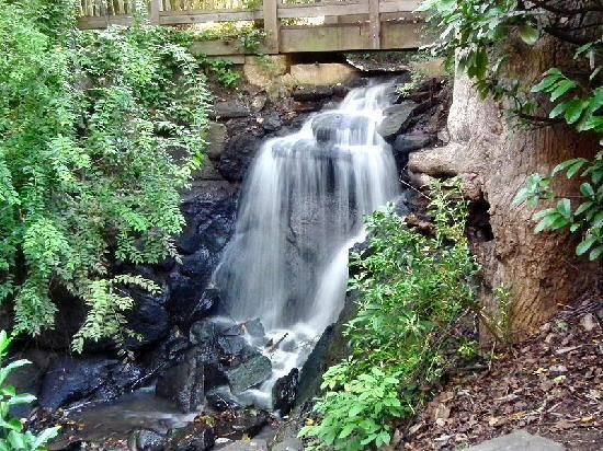 13 Best Waterfalls In Sc State Parks Images On Pinterest Waterfalls National Parks And State