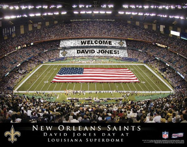 17 Best Images About Personalized Nfl Football Stadium