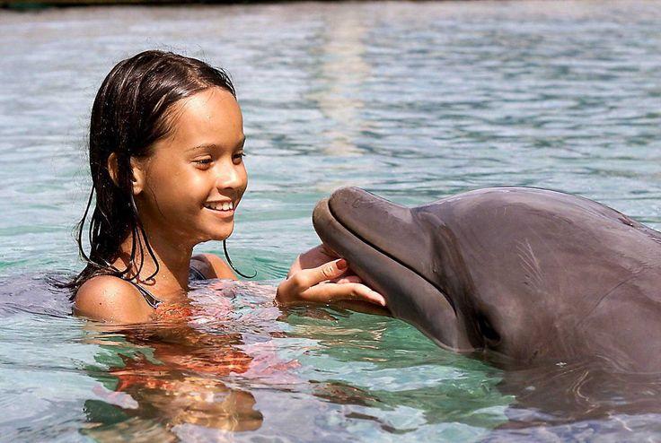 Dolphin Centre, Tahiti