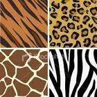 Cosas de chicas!: Uñas animal print