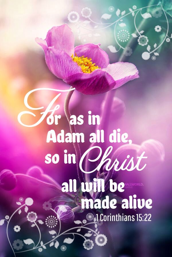 1 Corinthians 15:22 - As in Adam all die, so in Christ we will all be made alive.