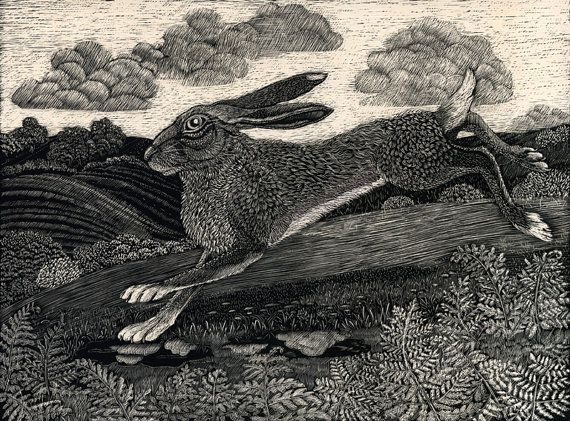 "Running Hare - Fine Art Print from an original Scratchboard design -Kay Leverton ""If I don't scratch a hare a month I feel bereft."""