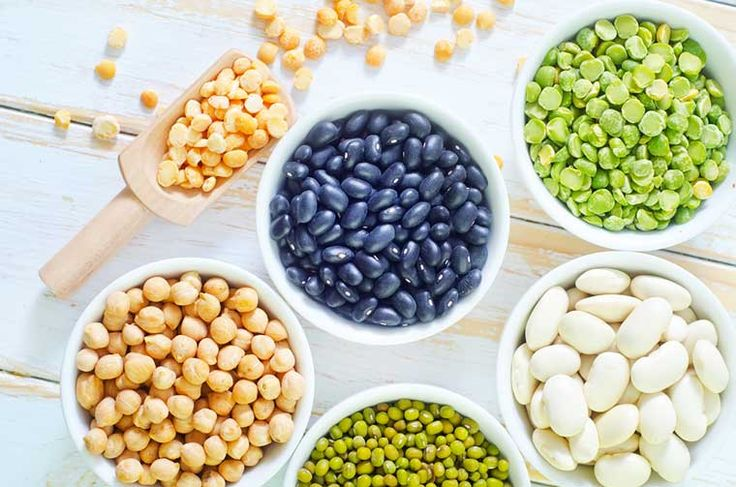 Οι φακές, τα φασόλια, η σόγια και τα προϊόντα της είναι πολύ καλές πηγές πρωτεΐνης που μπορούν να συναγωνιστούν πολλές ζωικές τροφές. Το σημείο που τα φυτικά τρόφιμα υστερούν με τα ζωικά είναι στα συστατικά των πρωτεϊνών, τα αμινοξέα.
