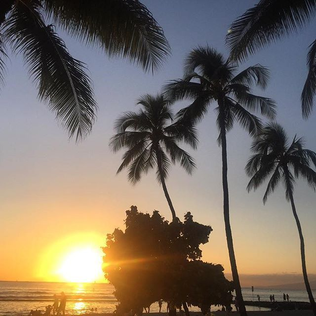 The best seats in the house, sunset time in Waikiki.  #waikiki #waikikisunset #waikikibeach #waikikioahu #oahu #hawaii #sunsethawaii #hawaiiansunset #visitoahu #visithonolulu #gohawaii #sunset #sunsetshot #beachsunset #palmtrees #beautifulsky #travel #travelgram #traveling #travelling #wanderlust #explore