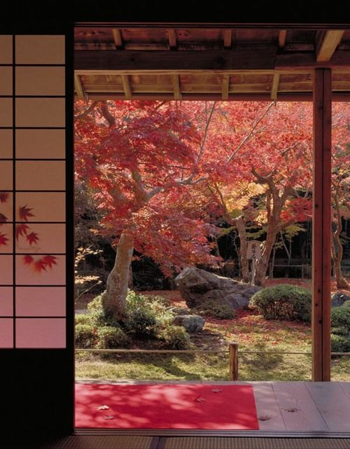 Japan , minimalist interior with an amazing view of flowering trees