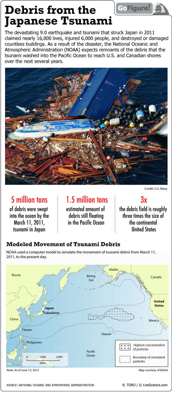 17 best images about tsunami sendai then and now tracking s tsunami debris infographic