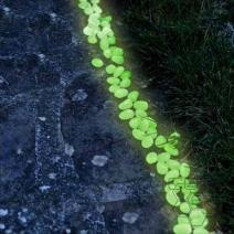 Glow in the dark landscaping rock bitchin camero pinterest glow landscaping rocks and the for Glow in the dark garden pebbles