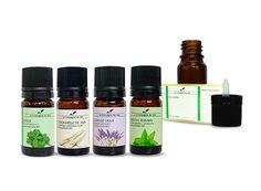 Comment lutter contre les mouches avec les huiles essentielles ?
