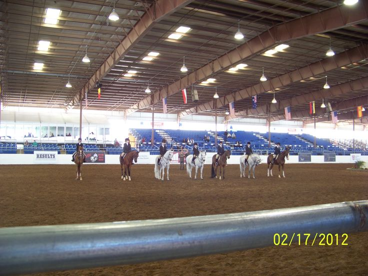 Arabian Horse Show at Westworld. If you're a horse lover this is a MUST for your bucket list! 16601 N Pima Rd  Scottsdale, AZ 85260 (480) 312-6802