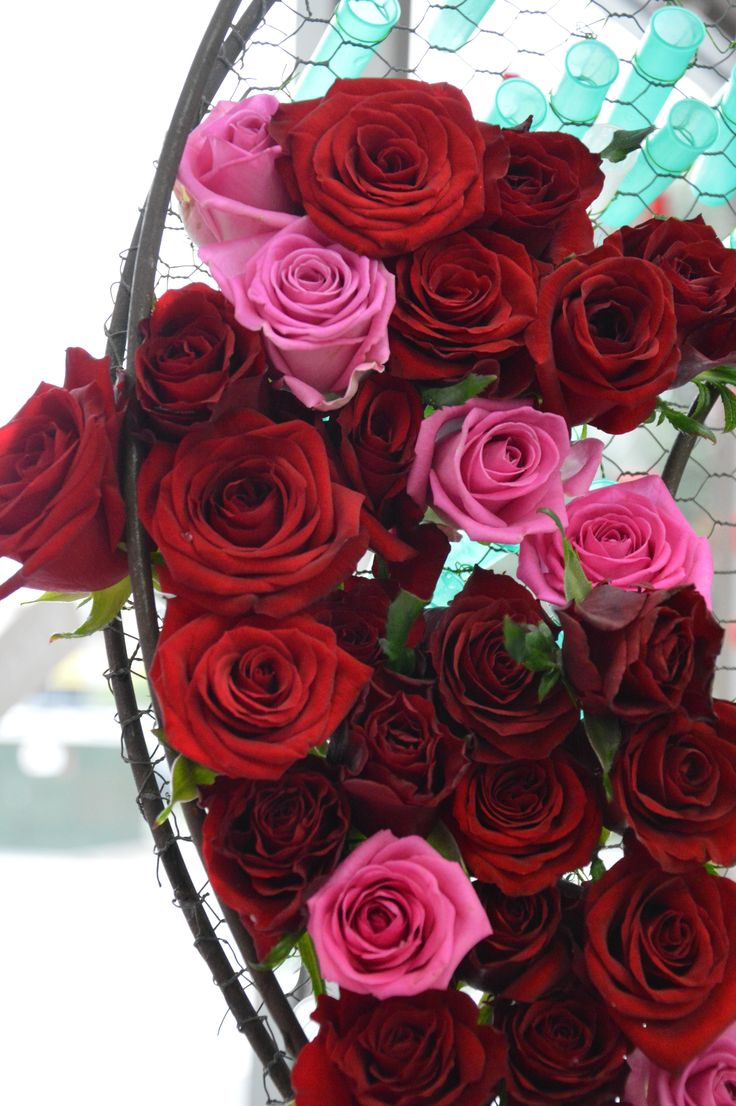Roses and roses ...