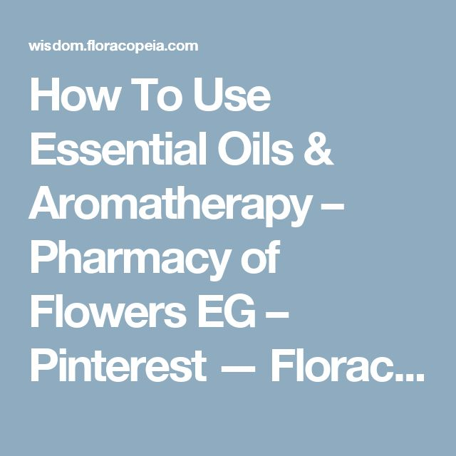 22 best driving images on pinterest a stick car stuff and textbook how to use essential oils aromatherapy pharmacy of flowers eg pinterest floracopeia fandeluxe Image collections
