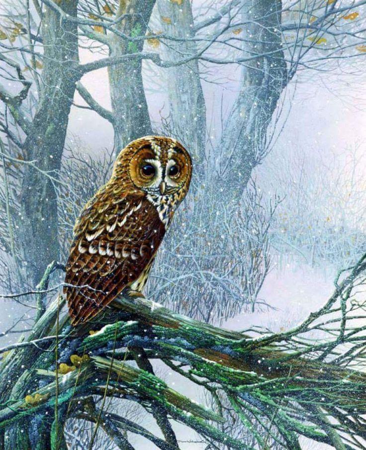 Painter JAN WEENINK   Beauty in Art
