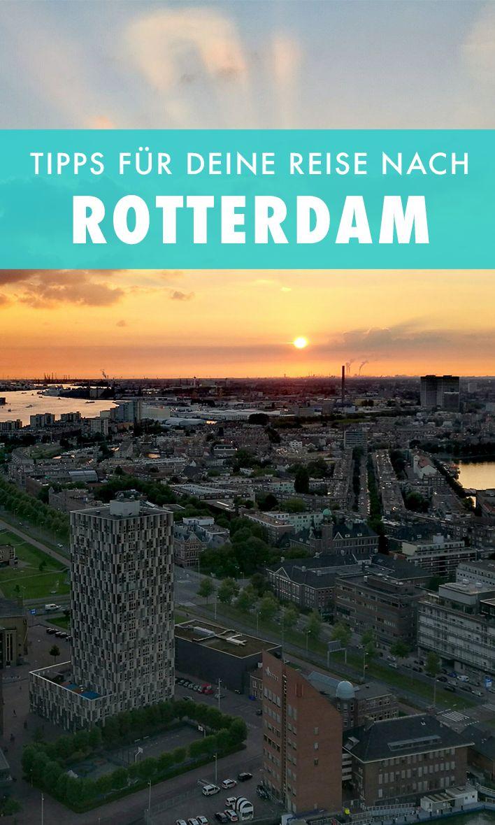 Rotterdam bietet verrückte Architektur, eine großartige, alternative Szene und auch sonst eine ganze Menge Highlights. Wir zeigen dir unsere Tipps.