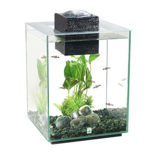 Best 25 aquarium set ideas on pinterest freshwater aquarium plants amazing fish tanks and - Cool looking house plants ...