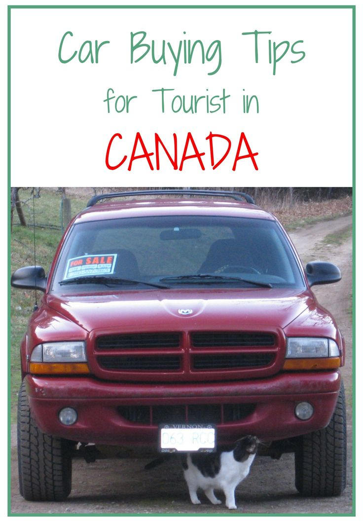 Car Buying Tips for Tourists in Canada.