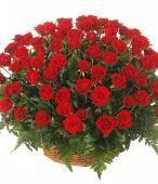 51 rose rosse, un regalo indimenticabile #sanvalentino2014