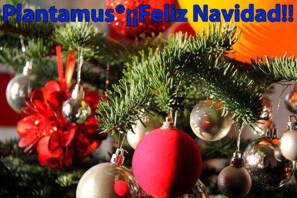 Felices Fiestas a todos. www.plantamus.es