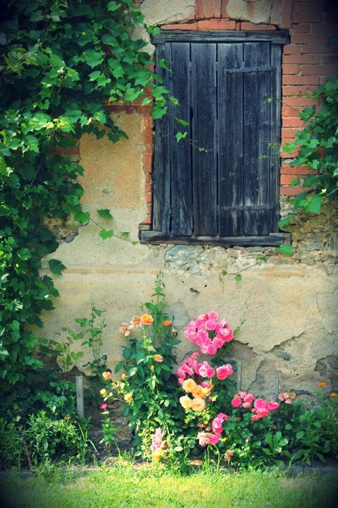 Countryside walls