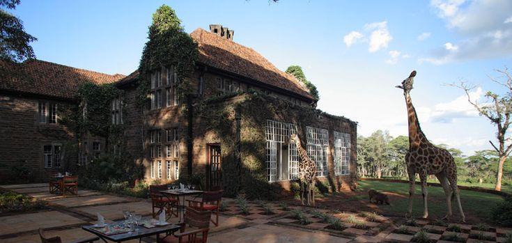 Giraffe Manor near Nairobi, Kenya