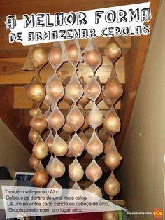 como-armazenar-cebolas-e-alho