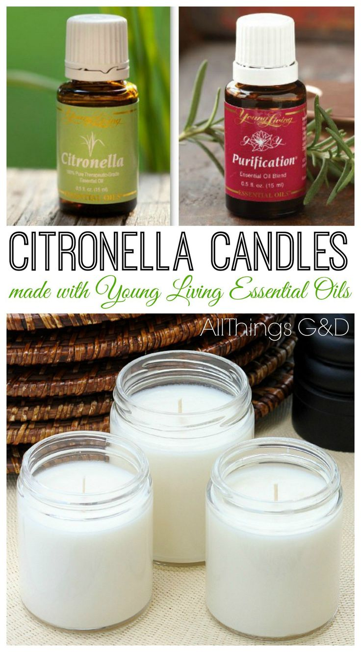 Make Your Own (Even Better) Citronella Candles - All Things G&D