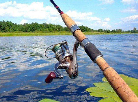 Ловля хищных рыб спиннингом    Рыбалка со спиннингом считается скорее спортивным видом ловли, нежели любительским. Ловля спиннингом включает в себя ряд преимуществ. Нет необходимости прикармливать рыбу, добывать наживку и насаживать ее каждый раз на крючок.    Перед ловлей необходимо промерить глубину места ловли и особенности дна. Для этого вместо блесны забрасывают грушевидное грузило и простукивают им дно, запоминая все его неровности и места, где возможны зацепы. Блеснить лучше именно в…