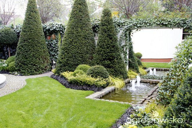 Ogród nie tylko bukszpanowy - część III - strona 532 - Forum ogrodnicze - Ogrodowisko
