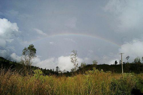 Raibow at Bondowoso, East of Java - Indonesia #Nature #Rainbow #Indonesia