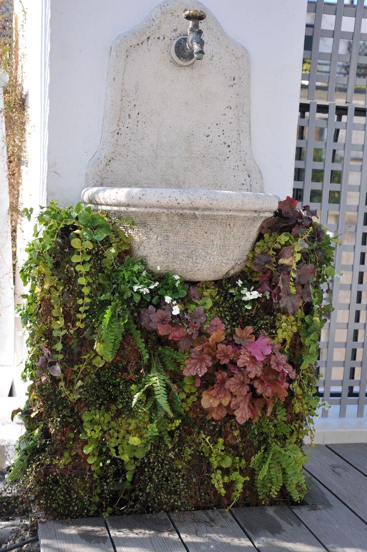 Fontaine en mur Végétal sur Terrasse à Paris. Création et photo Taffin