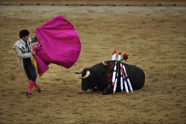 An assistant of Spanish mounted bullfighter Leonardo Hernandez performs during a horseback bullfight at San Fermin Fiestas, in Pamplona, northern Spain, Wednesday, July 6, 2016. People from around the world kick off the festival with a messy party in the Pamplona town square, one day before the first of eight days of the running of the bulls. (AP Photo/Alvaro Barrientos)