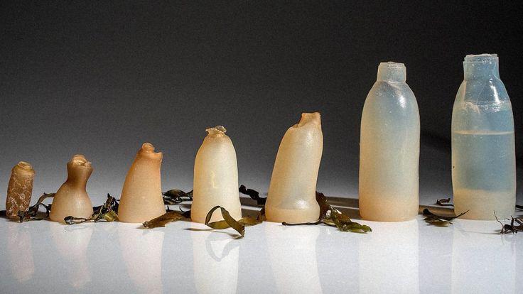 Une bouteille d'eau à base d'algues, biodégradable et mangeable !