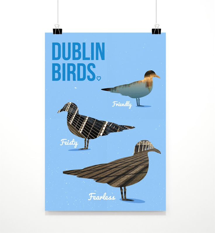 Print featured in @HALFTONE_IE - the Fresh New Print Exhibition in Temple Bar Dublin. These humorous prints depict the famous birds which heavily populate Dublin city centre's boardwalk, along the River Liffey. These birds are known to circulate people eating their lunches, hoping to get a bite. @tlp_says @photoireland #design #graphicdesign #dublinbirds #humour #prints #dublinevents #templebar #irishsonglyrics #mollymalone #clarelynchcreative #halftone