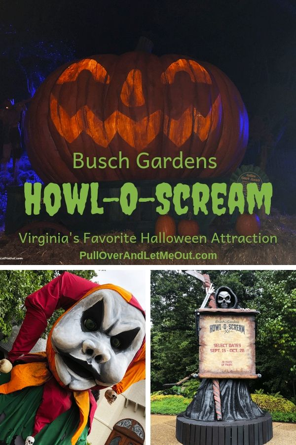 25ccb0893650957fb1dcb9198b01e9b5 - Busch Gardens Howl O Scream Williamsburg Discount
