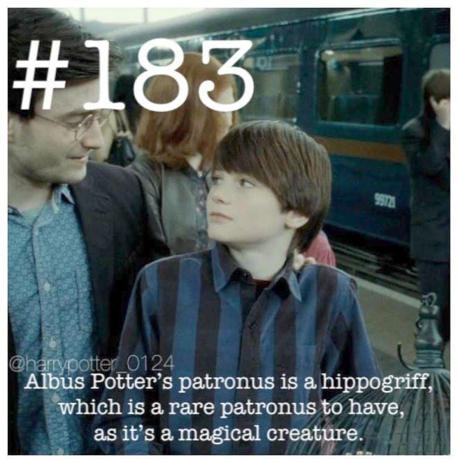 Funny Harry Potter Memes Facebook Harry Potter Spells Effects Harry Potter Facts Potter Facts Harry Potter