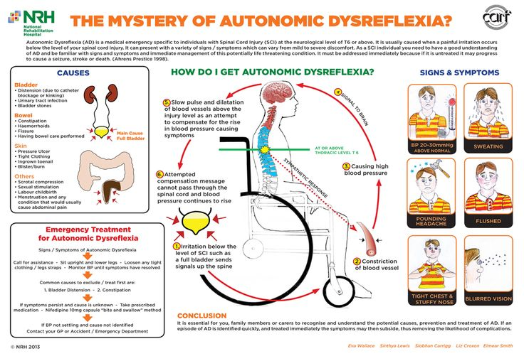 Autonomic Dysreflexia.  >>> See it. Believe it. Do it. Watch thousands of spinal cord injury videos at SPINALpedia.com