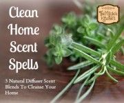 3 Clean Home Diffuser Blends to Cleanse Your Home The Magick Kitchen Spell Work