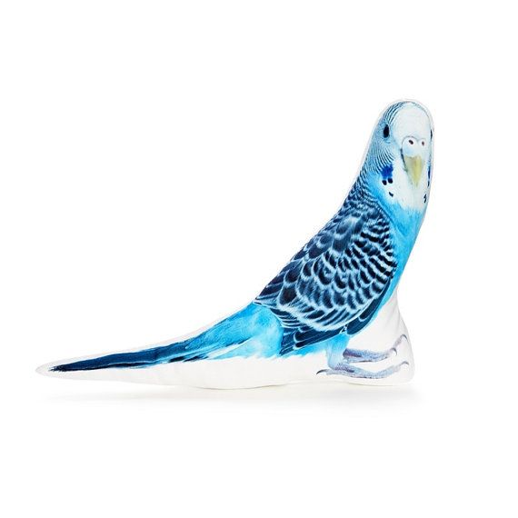 Budgie Bird Pillow Bird Cushion Accent Cushion Toss