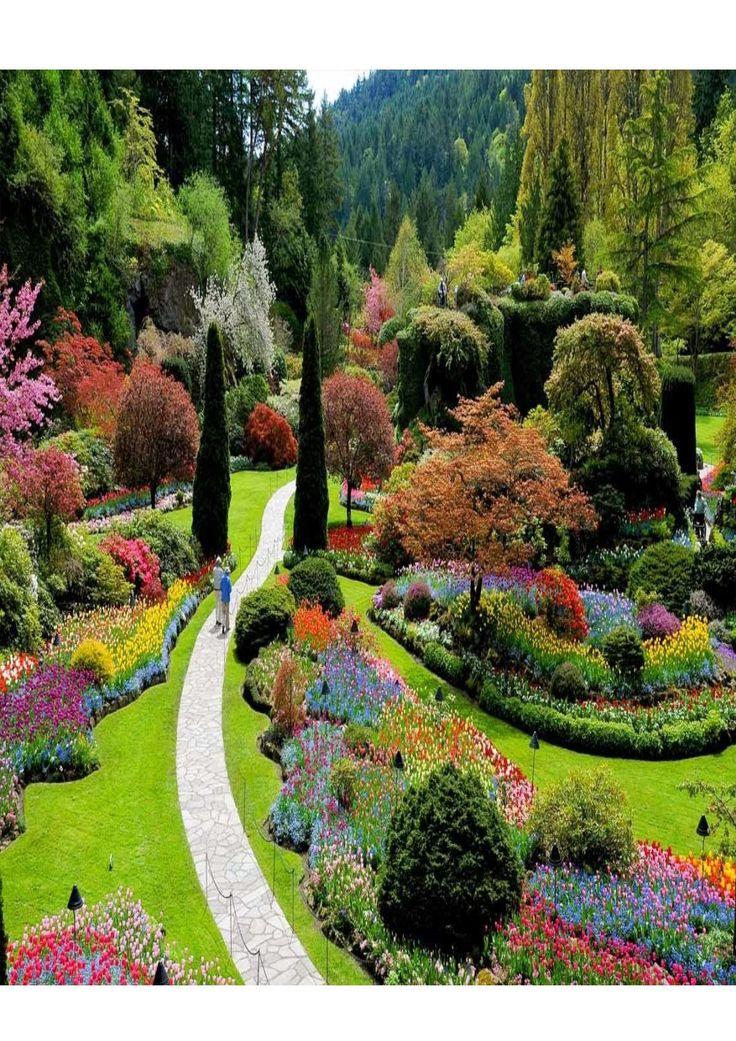 Revista jardines by leonelrojas - issuu