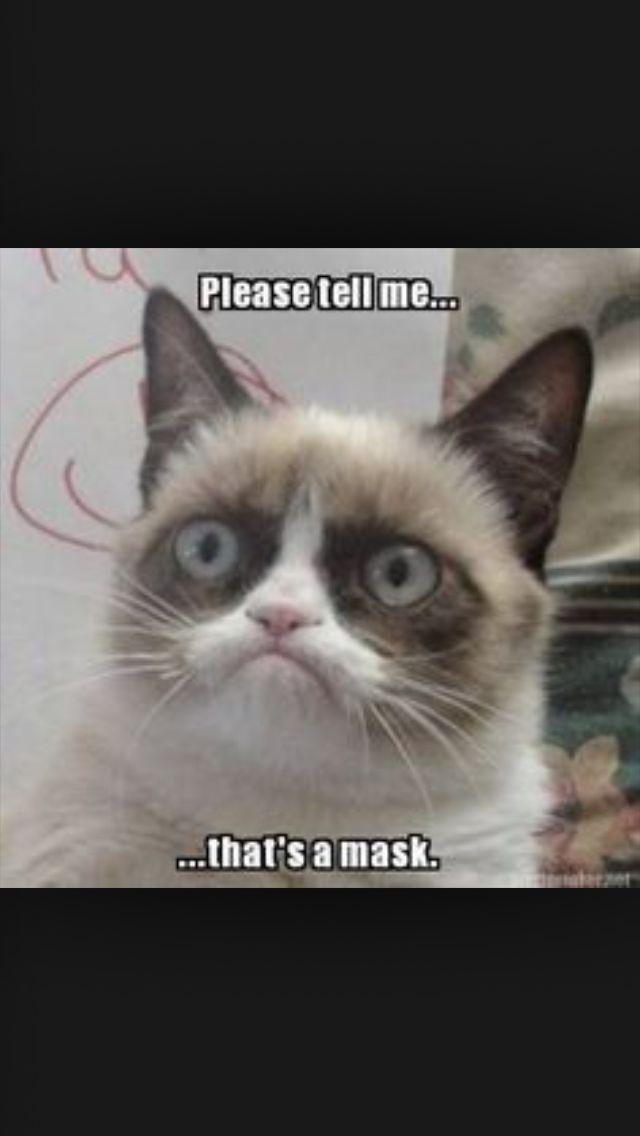 grumpy cat wedding invitations%0A Grumpy Cat strikes again