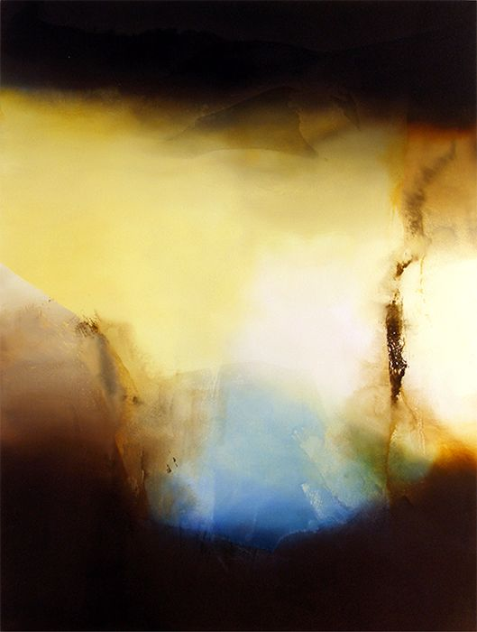 Filagree and Ambiance, 2011, 60x48, acrylic on panel