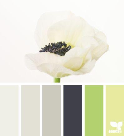 Vert, jaune, neutres, blanc